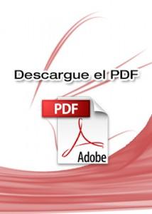 PDF-214x300